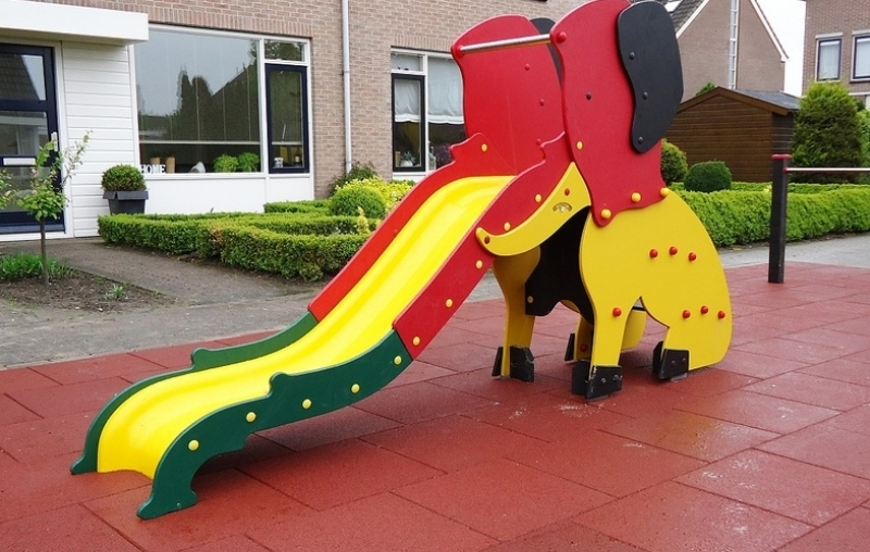 Safari Slide